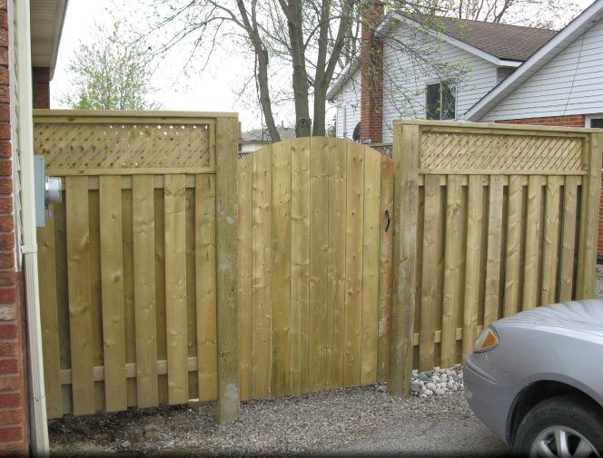 New fence & gate to the backyard.